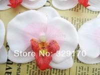 "5X Butterfly orchid Head Artificial Silk Flower Heads Wedding 2.8""/7cm sf161"