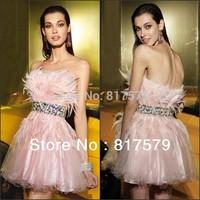 Elegant Pink Feather Waistband Embellished Puffy Short Organza Prom Tube Dress