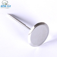 Stainless Steel Cake Flower Nails  Decorating Nails Needle Cupcake Lcing Cream Sugarcraft Decorating Baking Tools