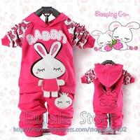 3set/lot hot Best-selling Autumn 2piece Suit Sets Girl's Tracksuits Clothing Sets 100%cotton Sport Suits Hoody Jackets+Pants