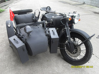 Cool Shinny Black with Pinstripe Motorcycle Sidecar