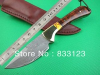 100% true Damascus small straight knife Mantis - Classic snake wood big knife Thomas Collection pure hand-made HK Free shipping