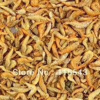 Arowana fish shrimp feed Lohan parrot fish feed grain dried shrimp food for fish