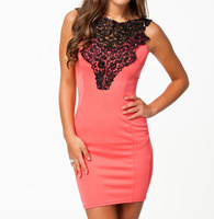 2013 New European Fashion Women Sleeveless Elegant Embroidered Bodycon Casual Dress 9011