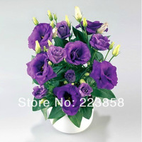 Lisianthus seeds, potted balcony,seasons planting, germination rate of 95%,50 pieces/lot