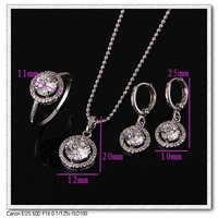 NEW ARRIVAL hotsale Platinum Plated Bridal Jewelry Sets, Free shipping  KUNIU DJE0040
