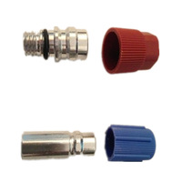 Automotive air conditioning pipe fittings aluminum fluoride air conditioning plus liquid nozzle assembly Nipples