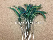 cheap dyed peacock feather