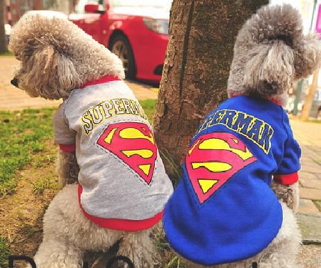 Pet Supplies Puppy Pet Dog Clothes Costumes Superman Apparel T Shirt Suit 2 color(China (Mainland))