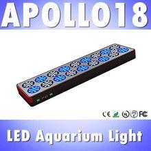 popular coral led