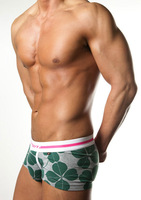 panties boxer panties men's trunk ZPOH High quality 2013 New Arrival 100% Cotton men's Underwear Sexy Business Boxer trunk short