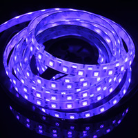 NEW Decorative Dark Purple Plum Glue Waterproof IP65 DC12V 5M 60leds/m 300leds 72W 3M Sticker Flexible LED Strip Light SMD5050
