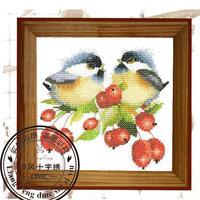 FREE SHIPPING+HOT SALES+ Dmc spiraea cross stitch dw1461 magazine bird - flower 4