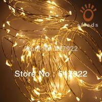 New 5M 50LEDs Warm White Led copper String Light LED Fairy Light + Power Adapter