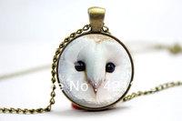 10pcs/lot Barn Owl Necklace, Owl Art Pendant Charm With Necklace Chain, Bronze  Glass Cabochon Necklace