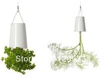 Free Shipping 1Piece Sky Planter Upside-Down Plant Pot