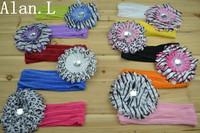 Lot of 18 Baby girls Silk 7 inch Headband Headwrap & Baby Children Infant Toddlers Zebra daisy flower clips