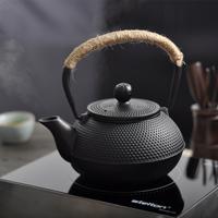 Iron pot kung fu teapot cast iron pot coating iron pot th129