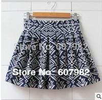 Fashion Skirts Female Newest Style Floral Print Skirt 2014 Women Skirts Korea Mini Pleated Geometric Skirt For Autumn KZ93