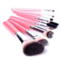 2014 Updated version 10PCS Makeup Brush for women Cosmetic Brushes Set With Lightning Pink Leather Pouch Blush Lip Mascara Brush