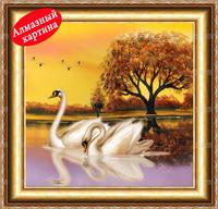 Free shipping DIY diamond painting diamond cross stitch kit Inlaid decorative painting Swan Tour DM110340