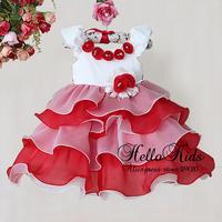 Fashion Baby Girls Christmas Flower Dresses Red Rose Cake Dress Children 2014 New Year Kids Wedding Wear Hot Seller