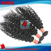 4Pcs Lot Unprocessed Virgin Malaysian Curly Hair Human Ombre Hair Weave Malaysian Virgin Hair 14Oz/lot Color #1b Free Shipping
