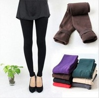 New 2013 Woman's Leggings Casual Warm Winter Faux Velvet Legging High Quality Knitted Thick Slim wamen Leggings Free Shipping