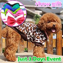 wholesale dog clothes shop
