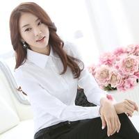 New Fashion Office Lady White Shirt 2014 Korean Casual Design Top Size S-4XL Noble Charm Women Formal Blouse Plus Size BK237