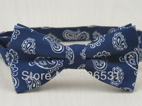 New style bowtie/dark blue and gray/blue white Water droplets shape design/man Leisure and fashion bowknot, tie/free shipping