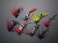 Free100pcs Box w/ 6 Caddis Moth Lure wooly Hook #6 Trout flies Fly Fishing 004
