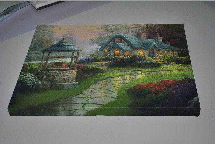 Home decoration painting Frameless oil painting LED painting Morden style painting Dining room oil painting Luminous painting(China (Mainland))