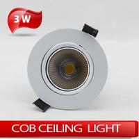 10pcs/lot COB ceiling light down light 3W high power  AC85~265V indoor lighting ceilinglight downlight