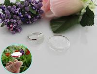 2pcs 22/27MM Flat Bubble Liquid Rings,glass bubble rings,Glass Globe Bottle Rings,glass globe rings,Fairy Dust Bottles