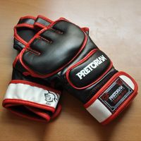 2014 new boxing gloves / PRETORIAN high quality PU material boxing glove /Boxing Fist Weapon/MMA Professional Training Gloves/ L