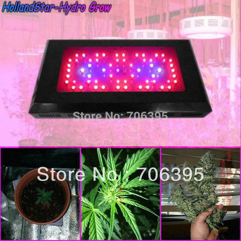Blackstar Hidro espectro total de 180W LED cresce luzes , com 60pcs 3W LED crescer planta luz para Lampl Planta & Veg Blooming(China (Mainland))
