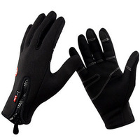 Free Shipping Outdoor Sports Ski Riding Bike Bicycle Driving Fleece Warm Thermal Winter Warm Gloves -- Phone Touch Screen