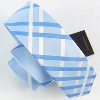 New Men's Classic Stripe Ties For Men Blue White Plaid Necktie Designer Brands Wedding 5cm Slim Tie Mens Skinny Free Delivery