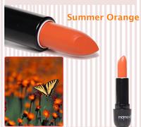 8.19 Sales Promotion 2014 New Pro Orange Cosmetics Waterproof Matte Lipstick High Quality Lips Makeup Free shipping