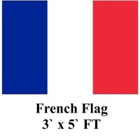 10pcs/lot French Flag 3` x 5` FT 90x150cm 100% Polyester Flags and Banners Franch Country Flag Free shipping