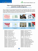 Free Shipping ! high quality Wholesale 26pcs microbiology prepared slides set for student learning in the lab class