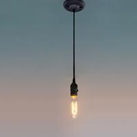 Ecopower 40-Watt Nostalgic Edison Bulb, Antique Tubular, Hairpin Filament for chandelier pendant lamp