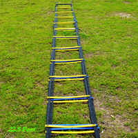 22.5Feet 13rungs Soccer Training 10pcs/Lot  agility ladder Quick Flat Rung Speed  Ladder