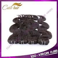 Queen Hair Products 4 PCS/LOT Brazilian Virgin Hair Body Wave Virgin Brazilian Human Hair Extensions Brazillian Virgin Hair