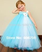 2014 girl Photography Blue Tutus Dress Little Girl Blue with Flower Birthday Tutu Dress Free Shipping Size 4/5/6/7/8/9