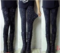 body 2014 spring female leopard print ankle length trousers legging plus size mm high waist elastic