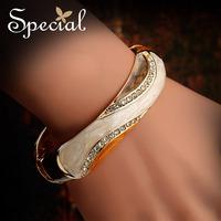 Special Classic Bangles Free Shipping Enamel Bracelets Dream Magician 2014030707