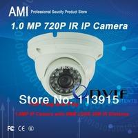 Free Shipment IP IR DOME Camera Outdoor 720P Waterproof IP66 Network 1.0MP HD CCTV Camera P2P IR IP dome HD 720P Camera