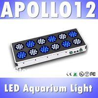 Apollo 12 144*3W LED aquarium light White: Blue=1:1 full spectrum reef coral tank light, White 12000k &Blue 460nm (Customizable)